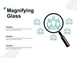 Magnifying Glass Capture H78 Ppt Powerpoint Presentation Portfolio Grid