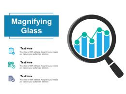 Magnifying Glass Management Ppt Powerpoint Presentation File Icon