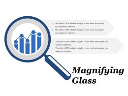 Magnifying Glass Ppt Ideas Example Introduction