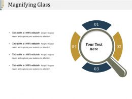 Magnifying Glass Ppt Infographics
