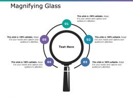 Magnifying Glass Ppt Infographics Slides