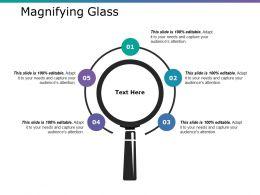 Magnifying Glass Ppt Infographics Slides