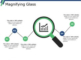 Magnifying Glass Ppt Summary Example Introduction