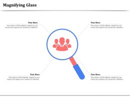 Magnifying Glass Software Application Ppt Powerpoint Presentation Introduction