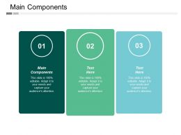 Main Components Ppt Powerpoint Presentation File Templates Cpb