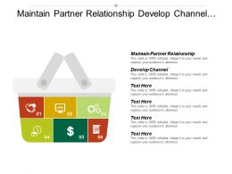Maintain Partner Relationship Develop Channel Sales Strategy Manage Collaborative