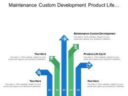 Maintenance Custom Development Product Life Cycle Analysis Price