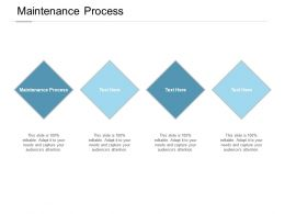 Maintenance Process Ppt Powerpoint Presentation File Layouts Cpb