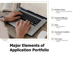 Major Elements Of Application Portfolio
