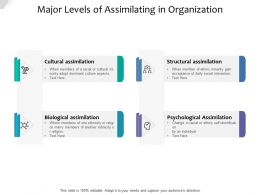 Major Levels Of Assimilating In Organization