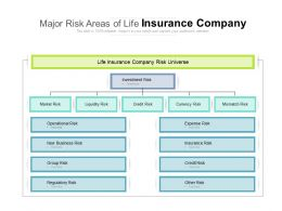 Major Risk Areas Of Life Insurance Company