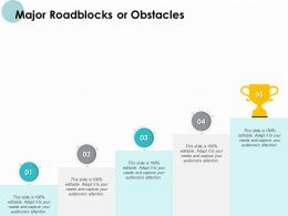 Major Roadblocks Or Obstacles Portfolio Ppt Powerpoint Presentation Graphics Download