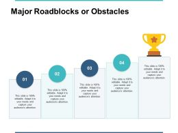 Major Roadblocks Or Obstacles Ppt Powerpoint Presentation File Maker