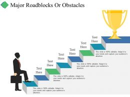 Major Roadblocks Or Obstacles Ppt Summary Slides