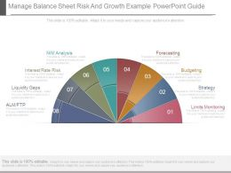 Manage Balance Sheet Risk And Growth Example Powerpoint Guide