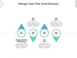 Manage Cash Flow Small Business Ppt Powerpoint Presentation Infographics Images Cpb