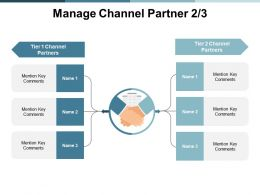 Manage Channel Partner Opportunity Ppt Powerpoint Presentation File Picture