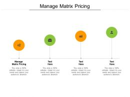 Manage Matrix Pricing Ppt Powerpoint Presentation Portfolio Demonstration Cpb