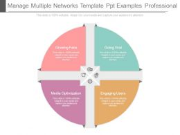 Manage Multiple Networks Template Ppt Examples Professional