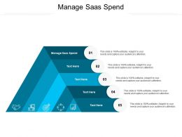 Manage Saas Spend Ppt Powerpoint Presentation File Display Cpb