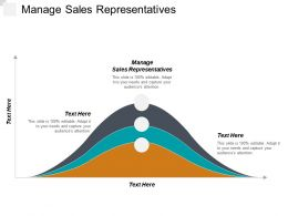 Manage Sales Representatives Ppt Powerpoint Presentation Gallery Backgrounds Cpb