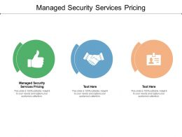 Managed Security Services Pricing Ppt Powerpoint Presentation Icon File Formats Cpb