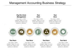 Management Accounting Business Strategy Ppt Powerpoint Presentation Infographics Files Cpb