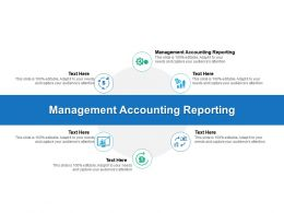 Management Accounting Reporting Ppt Powerpoint Presentation Styles Grid Cpb