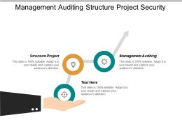 Management Auditing Structure Project Security Requirements Business Tactics Cpb