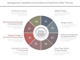 Management Capability And Excellence Powerpoint Slide Themes
