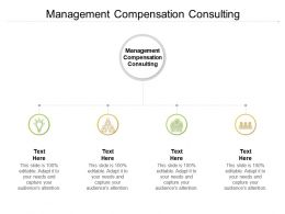 Management Compensation Consulting Ppt Powerpoint Template Picture Cpb
