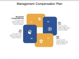 Management Compensation Plan Ppt Powerpoint Presentation Professional Aids Cpb