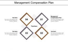 Management Compensation Plan Ppt Powerpoint Presentation Styles Pictures Cpb