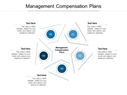 Management Compensation Plans Ppt Powerpoint Presentation Professional Example File Cpb