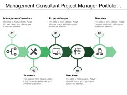 Management Consultant Project Manager Portfolio Strategy