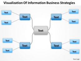Management Consultant Visualization Of Information Business Strategies Powerpoint Templates 0528
