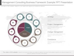 Management Consulting Business Framework Example Ppt Presentation