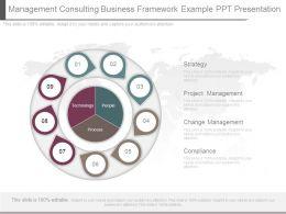 management_consulting_business_framework_example_ppt_presentation_Slide01