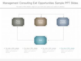 Management Consulting Exit Opportunities Sample Ppt Slides