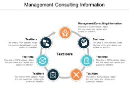 Management Consulting Information Ppt Powerpoint Presentation Outline Gallery Cpb