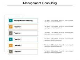 Management Consulting Ppt Powerpoint Presentation Gallery Slide Portrait Cpb