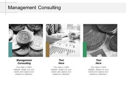 Management Consulting Ppt Powerpoint Presentation Pictures Visual Aids Cpb