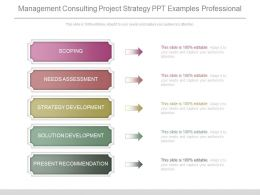 Management Consulting Project Strategy Ppt Examples Professional