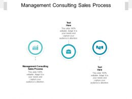 Management Consulting Sales Process Ppt Powerpoint Presentation Styles Mockup Cpb