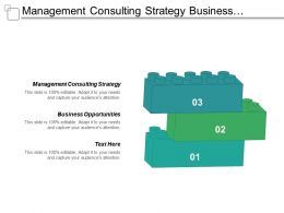 Management Consulting Strategy Business Opportunities Strategic Sourcing Process Cpb