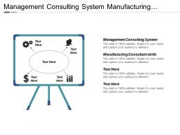 Management Consulting System Manufacturing Consultant Skills Cpb
