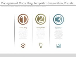 Management Consulting Template Presentation Visuals