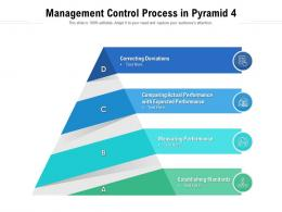 Management Control Process In Pyramid 4