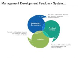 Management Development Feedback System Organization Assessment Strategic Direction