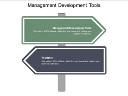 Management Development Tools Ppt Powerpoint Presentation Styles Graphics Design Cpb